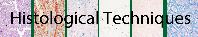 Past, present and future: overview on histology and ...